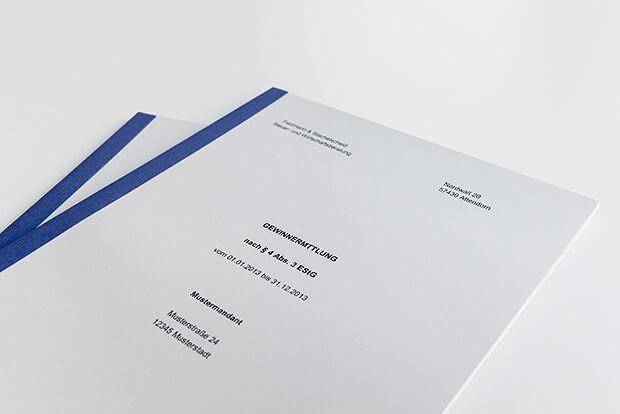 Bilanzbericht - Jahresabschlusserklärung - Beratung in Steuer- und Haftungsfragen - Finanzbuch- und Lohnbuchführung - Unsere Sozietät betreut Sie umfassend aus einer Hand.
